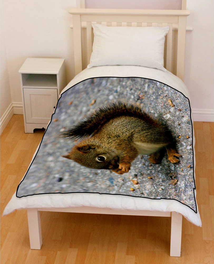 animals squirrel eating nut cute bedding throw fleece blanket