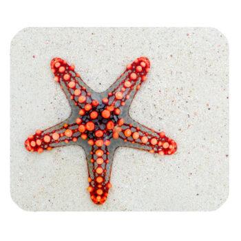 starfish on sand mousepad